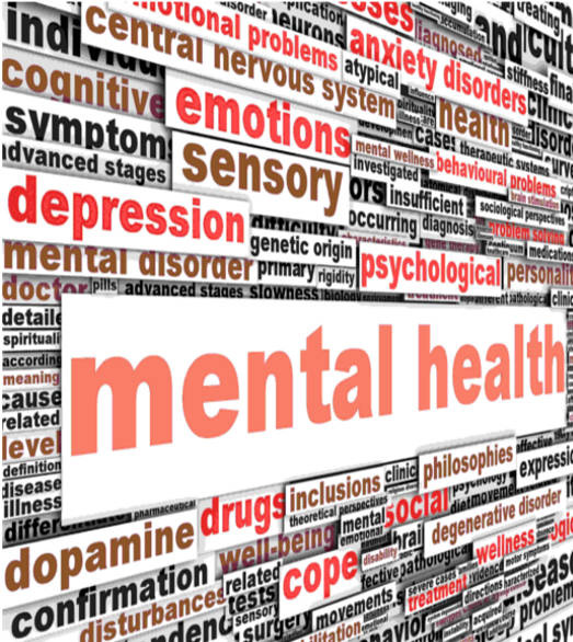 what are mental health services